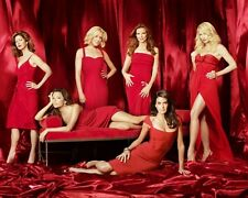 Desperate Housewives [Cast] (42299) 8x10 Photo
