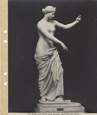 Brogi 5106. NAPOLI Museo Nazionale. Venere Vittoriosa (Capua)