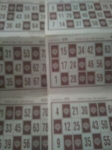 24 Cartones de bingo