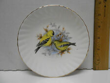 Royal Dover Saucer Yellow Birds  Bone China with Gold Rim England---NO CUP