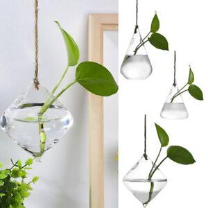 Hanging Glass Ball Vase Flower Plant Pot Terrarium Container Wedding Decor