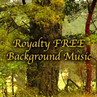 Professional Music 100+ Tracks Package Royalty Free