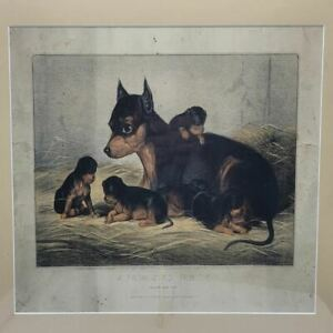 """""""Can't You Talk"""" Framed Hand Colored Lithograph"""