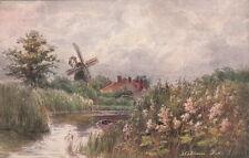 PARSONS NORMAN : 'The Meadow Sweet-Stlham Dyke-JARROLDS 'Wild Flower'
