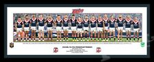 2018 Sydney Roosters Players Panoramic Print Framed