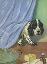 COCKER SPANIEL PUPPY AT BATHTIME CHARMING DOG GREETINGS NOTE CARD