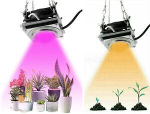 Full Spectrum COB Grow Light Led Plant lamp 4000K Greenhouse Vegetables Flowers