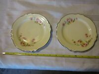 China replacement Homer Laughlin Virginia house usa B56N8 salad dessert plate