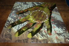 "SIMPLE MINDS - Vinyle Maxi 45 tours / 12"" !!! THE IS YOUR LAND !!! SMXT 4 !!!"