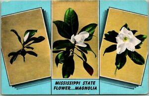 Vintage 1940s Mississippi State Flower Postcard MAGNOLIA 3 Views Kropp Linen
