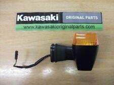 Kawasaki ZX10R 2004 C1 USA Modell Blinker vorne
