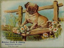Wm. W Dorrah Jeweler Watches Clocks Adorable Pug Dog Fence Daisies P44