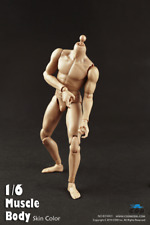 "COO Model Muscle Male Body 9.8"" Tall 1:6 Scale GI Joe Size Figures B34003"