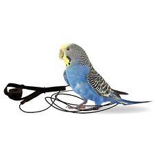 Nouveau taille: l'aviateur perroquet harnais & laisse-mini-noir