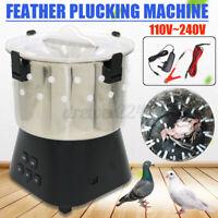 Huhn Taube Feder Rupfen Trocken Off Maschine Geflügel Pflücken Vögel