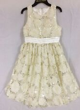 Girls Size 16 American Princess Easter Dress Sequin Rosettes Pageant Flower Girl