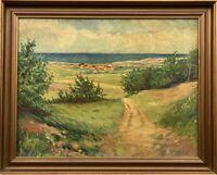 Küstenlandschaft im Sommer H. Herzog Nezø Ostsee Dänemark? 36 x 45 cm