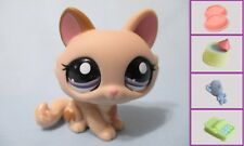 Littlest Pet Shop Cat Crouching 1444 and Free Accessory Authentic Lps