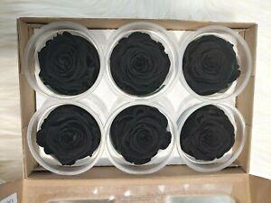 Preserved Roses - Eternity Rose - Valentine's day - Black - Forever Roses