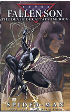 FALLEN SON THE DEATH OF CAPTAIN AMERICA #4 MICHAEL TURNER SPIDER-MAN COVER!