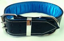 Large Black Leather Dog Collar with Soft Satin Blue Padded Inner Lining