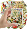 """Stickers pack [24 stkrs 2.5""""x3.5""""ea] Vintage Flowers Seed Pockets Gardens 1017"""