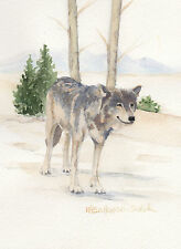 Wolf 10  in Lamar Valley in Yellowstone National Park Watercolor Reproduction