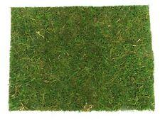 Natur Moosplatte Grasmatte Rasen 40x30cm für Krippen . Deko - Modellbau !!