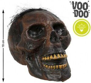 CRANE Tête de Mort VAUDOU Accessoire Décoration Déguisement Halloween NEUF