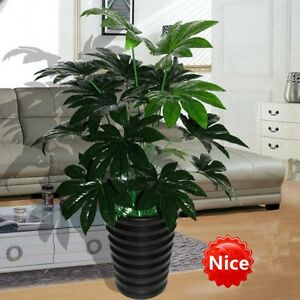 70cm Latex Artificial Evergreen Pachira Plant Tree Christmas Home Decor Green
