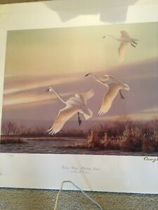 Owen Gromme Golden Wings Whistling Swans, gold ink signature, 640/850