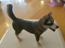Schleich 16371 Husky Rüde Hund neu ohne Fähnchen