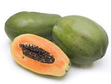 30 Papaya Melon Fruit Tree Carica Papaya Seeds + Gift