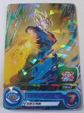 Carte Dragon Ball Z DBZ Super Dragon Ball Heroes Ultimate Booster Pack #PUMS-19g