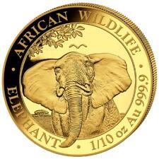 Somalia 100 SH. 2021 - Elefant - African Wildlife Anlagemünze - 1/10 Oz Gold ST