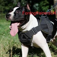 Staffordshire Bull Terrier Harness Reliable Nylon | Staffy Harness for Sale UK