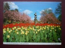 Unposted Swindon Collectable Wiltshire Postcards