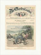 Ihr Lieblingsblatt Gartenlaube Schaukelstuhl Coloriert Original Druck GL 668