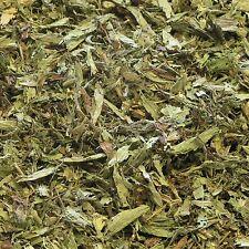 STEVIA LEAF Stevia rebaudiana DRIED HERB, Healing Herbal Tea 50g