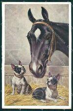 Reichert Horse and Boston Terrier dog MM 1169 postcard cartolina QT6982