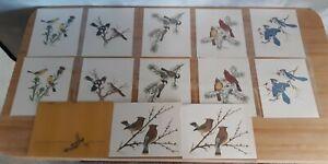 "1978 Collector's Portfolio of Song Birds by Sherm Pehrson 12 Prints 8""x10"""