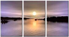 3 Panel Total size 90x50cm Large Digital Canvas Art Abstract Prints PURPLE HAZE