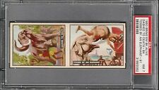 1950 Bring Em Back Alive #84-91 Two (2) Card Panel BEAUTIFUL NM PSA 7