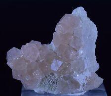 Beautiful PINK Grossular Garnet Group, Rare, Jeffrey Mine Asbestos Quebec Canada