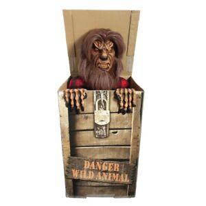 Spirit Halloween Prop Life Size Animated Werewolf Box Animatronic Wolf