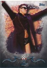 #23 THE MIZ 2016 Topps WWE Undisputed