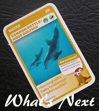 Woolworths<AUSSIE ANIMALS><Series 2 Baby Wildlife>CARD 28/36 Bottle-Nose Dolphin