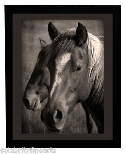 Horse & Pony Picture Choose Size Frame Gift for Horse Owner or Lover Poster NEW