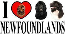 I LOVE NEWFOUNDLANDS Dog Car Sticker By Starprint - Ft. the Newfoundland