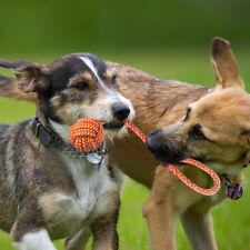 5pcs juguete cuerda de perro mascota masticable nudo perrito juguetes dentales